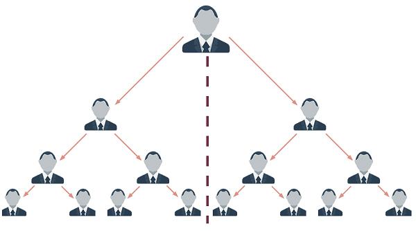 Marketing Multinível: Pernas da rede